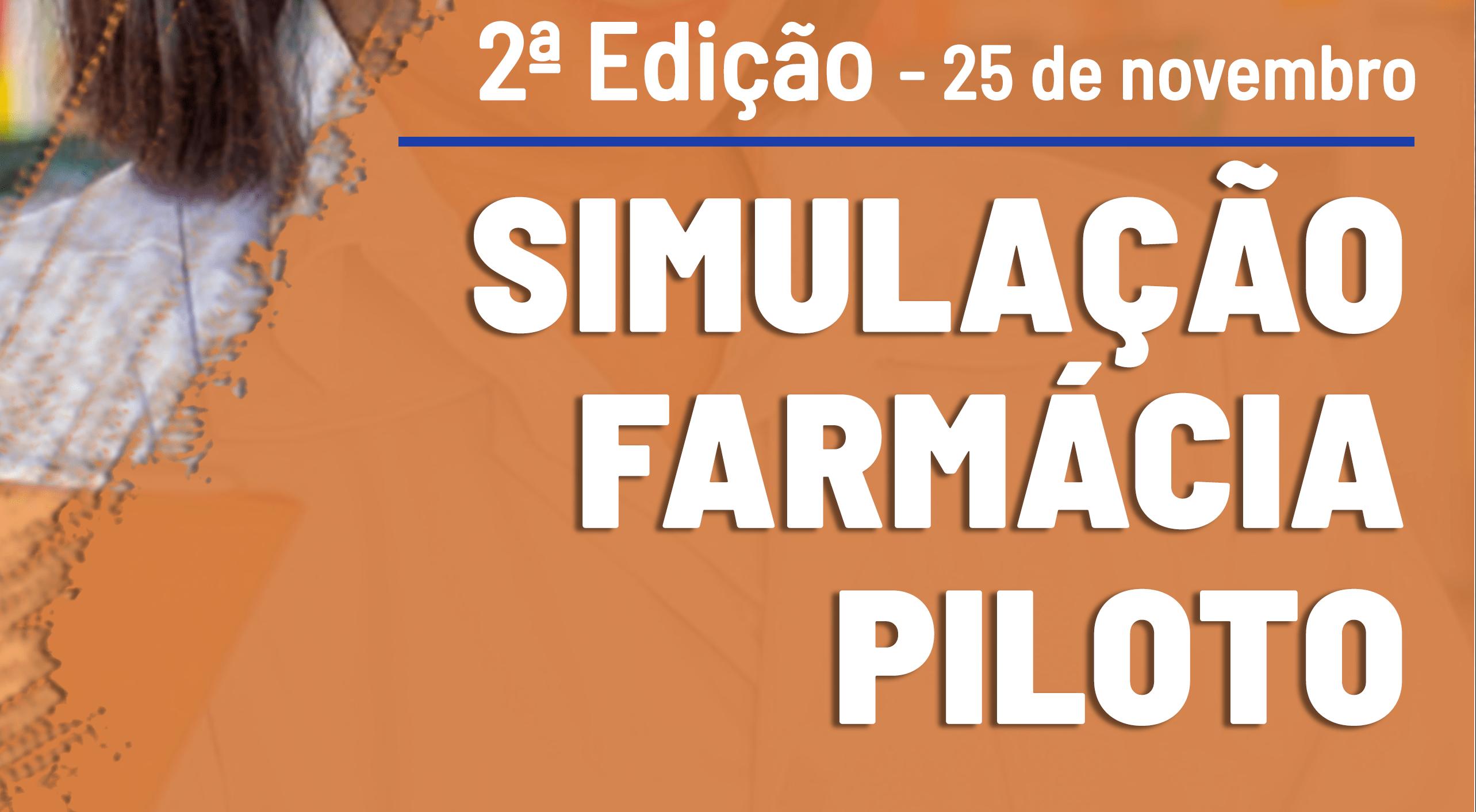 simulação piloto 2